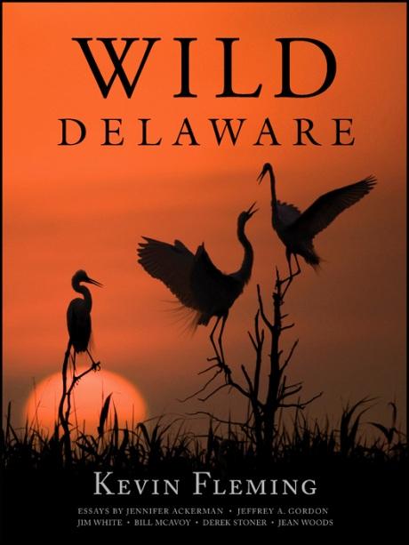 wild-delaware-cover